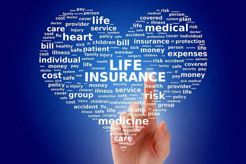 Learn the Differences Between Whole Life and Term Life Insurance,