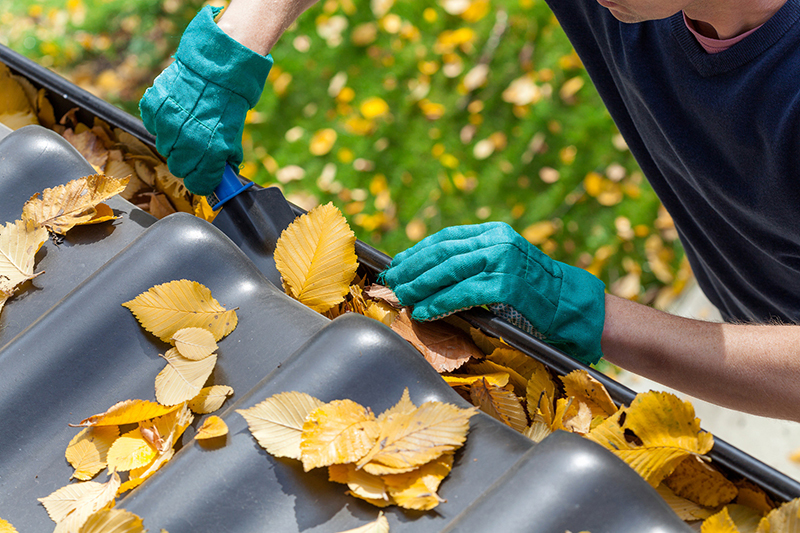 Spring Cleaning Tips to Avoid Insurance Claims