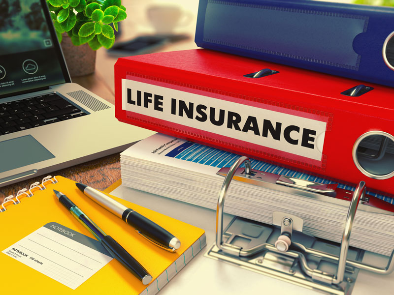 a life insurance policy in a binder
